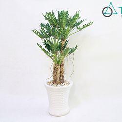 Chia sẻ Chậu cây xanh giả Cây gạc nai cao 130cm số 76