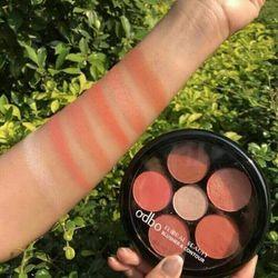 Bảng má hồng tạo khối ODBO Floral Beauty Blusher Contour OD161 giá sỉ