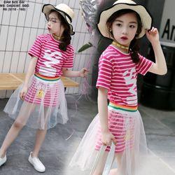 Đầm suông phối chan váy lưới 397D giá sỉ
