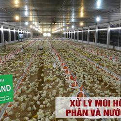 Men Vi Sinh Hữu Hiệu VietHand-01 giá sỉ