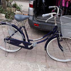 Xe đạp người lớn bricetone giá sỉ