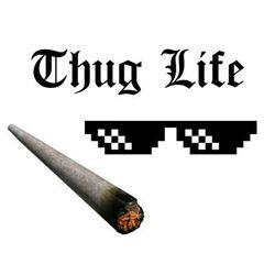 Kính phong cách Thuf Life