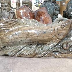 Cá kiếm long cá rồng giá sỉ