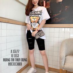 Áo thun cotton thời trang - BXVFF5 giá sỉ