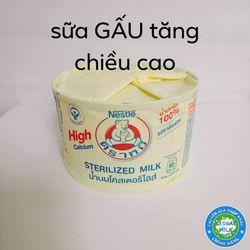 Sữa Gấu Tăng Chiều Cao Thái Lan Nestle giá sỉ