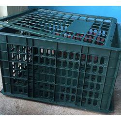Rổ xoài 30kg – Phú Hòa An giá sỉ