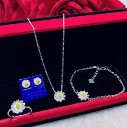 Set hoa cúc bạc ta giá sỉ