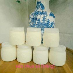 Sữa chua Trắng - Hủ 160ml giá sỉ