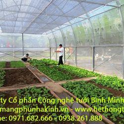 Đầu tư 2000m2 nhà lưới vốn bao nhiêu đầu tư rau thủy canh nhà lưới trang trại dự án rau an toàn trong nhà màng giá sỉ