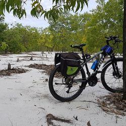 xe đạp địa hình Alcott 680XC khung nhôm màu xanh chuối giá sỉ, giá bán buôn