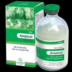 AMPICOL Hỗn dịch kháng sinh tiêm Trị tiêu chảy viêm phổi tụ huyết trùng viêm vú viêm tử cung viêm dạ dày ruột trên gia súc chó mèo gia cầm giá sỉ