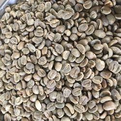 Cà phê nhân Arabica Lào