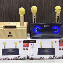 Loa karaoke SDRD SD301 kèm 2 mic không giá sỉ