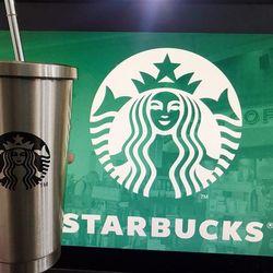 Ly Starbuck giá rẻ giá sỉ