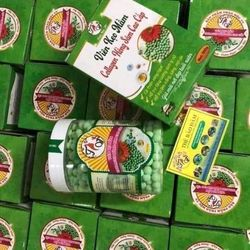 viên kẹo nghệ sữa ong chúa collagen dầu dừa giá sỉ