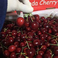 Cherry Canada giá sỉ giá bán buôn rẻ nhất Sài Gòn giá sỉ