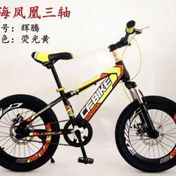 Xe đạp địa hình phanh đĩa bánh size 20 giá sỉ