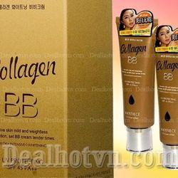 BB collagen 619 giá sỉ