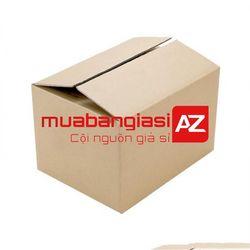 Thùng carton AZ04 25x10x10 cm - Hộp Bình Nước