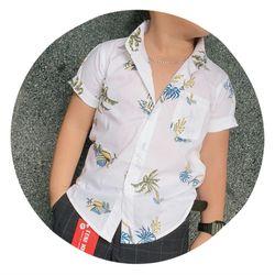 Áo sơmi ngắn dài tay quần lửng quần dài giá sỉ, giá bán buôn