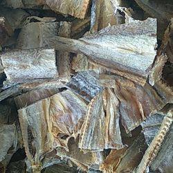 cá mối khô - thủy hải sản sấy khô giá sỉ