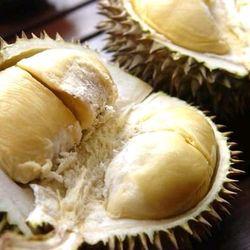 sầu cơm vàng hạt lép giá sỉ