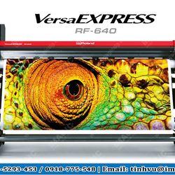 Máy in decal khổ lớn Nhật Bản Roland RF-640 giá sỉ