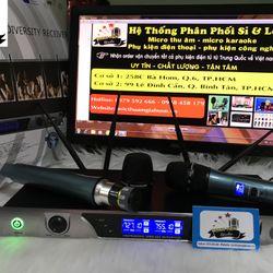 Micro không dây MT-990 giá sỉ