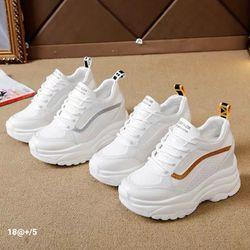 giày bata độn 3 phân - giày quãng châu giá sỉ