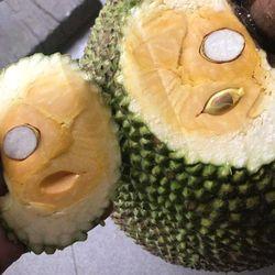Mít Thái Da Xanh cơm ngọt vàng ngon giá sỉ