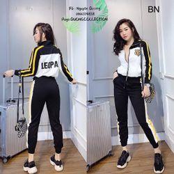 đồ bộ thể thao nữ mùa hè đẹp hàn quốc giá rẻ thêu hổ leopa BN 701814 Kèm Ảnh Thật giá sỉ