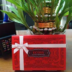 Hộp quà tặng cao cấp son nước hoa Hàn Quốc