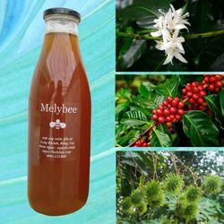 Mật ong hoa cà phê 1 lít nguyên chất bao đổi trả giá sỉ