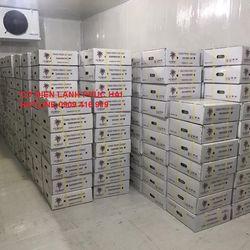 Lắp kho lạnh bảo quản trái cây giá sỉ, giá bán buôn