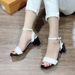 Giày sandal đế vuông bảng ngang giá sỉ