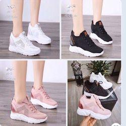 Giày bata đế độn chữ mới phối kim sa giá sỉ
