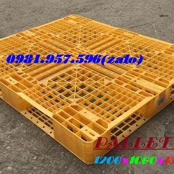 Tấm lót sàn pallet nâng hàng pallet nhựa giá tốt giá sỉ