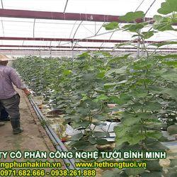 Lưới chắn côn trùng nông nghiệp lưới chắn côn trùng hà nội nhà lưới trên sân thượng nhà lưới mini giá mềm giá sỉ