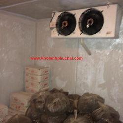 Chuyên thi công lắp đặt kho lạnh thủy sản với giá tốt nhất - giá sỉ