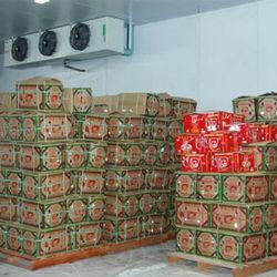 Chuyên cung cấp lắp đặt kho lạnh bảo quản trái cây giá sỉ
