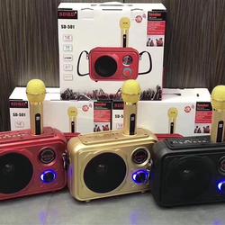 Bộ loa Karaoke SD-501 giá sỉ