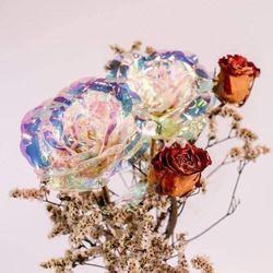 Hoa hồng Hologram giá sỉ