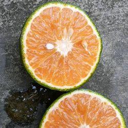 Trái cây giá sỉ