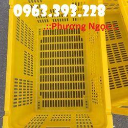 Sọt nhựa HS011 sọt nhựa đựng nông sản có quai sắt giá sỉ