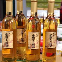 Rượu mơ vảy vàng Nhật Bản giá sỉ
