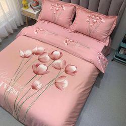 Bộ Chăn Ga Gối Cotton Lụa Hàn Quốc CL129 giá sỉ