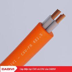 Dây cáp điện CXV-4x15 cadivi giá sỉ