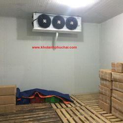 Cung cấp và lắp đặt hệ thống kho dodongo lạnh bảo quản thủy hải sản giá sỉ