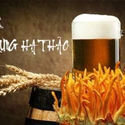 Bia đông trùng hạ thảo - Bia Tam Nguyên giá sỉ