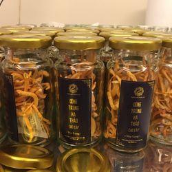Đông Trùng Hạ Thảo cao cấp hỗ trợ sức khỏe giá sỉ